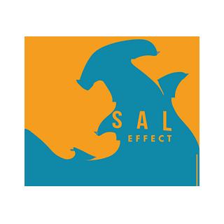 dorsal-effect-logo