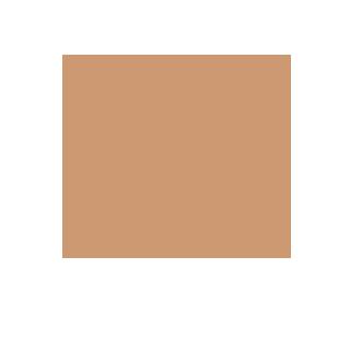 kontinentalist-logo